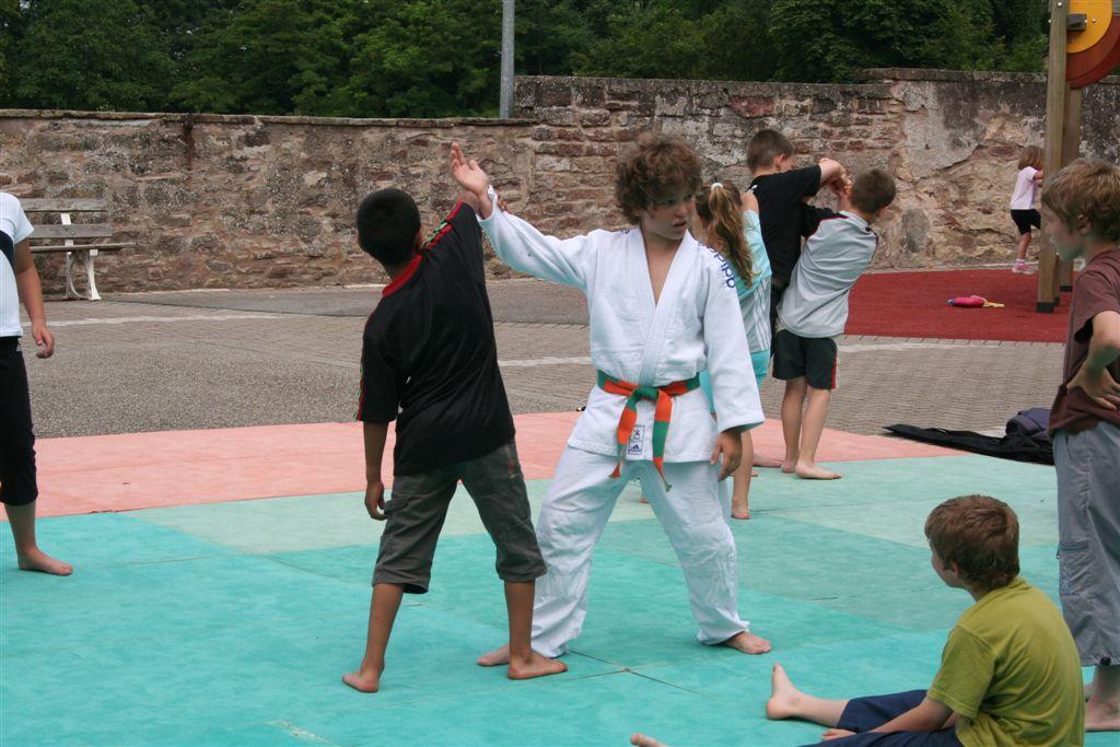 Démonstration Aikido à Marmoutier_20060628_030