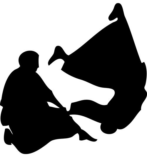 Aikido 1 m